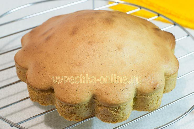бисквитный торт с черешней