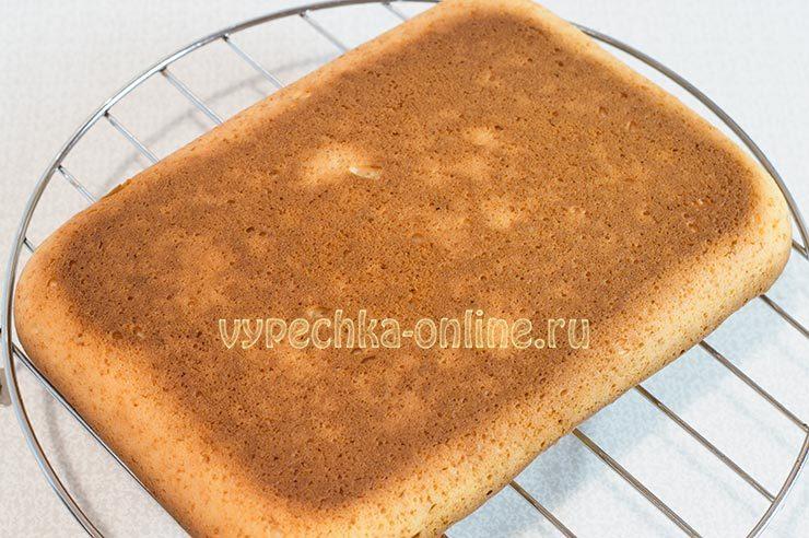 Бисквит на майонезе рецепт с фото пошагово в духовке