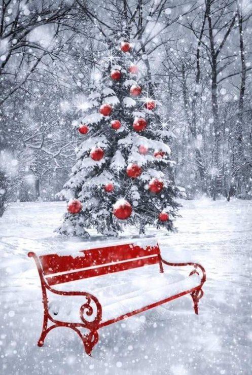 Красные ёлочные шары, скамейка