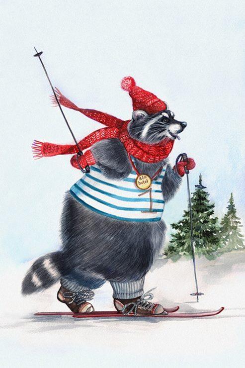 Енот на лыжах