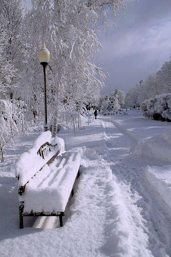 Зима, сугробы, лавочка