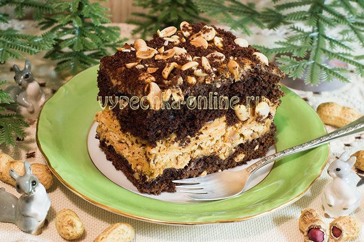 Шоколадный торт с безе и арахисом