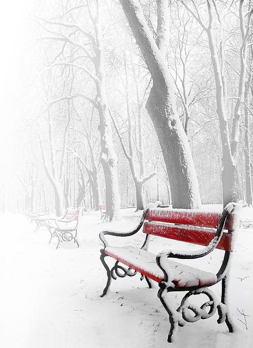 Лавочка в снегу