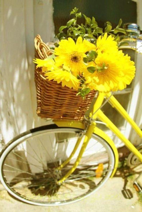 Велосипед с корзиной, герберы