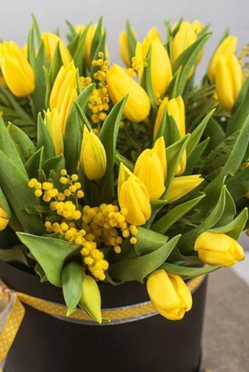 Тюльпаны, мимоза