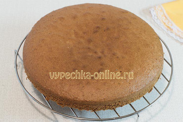 Шоколадный бисквит на кипятке рецепт с фото пошагово