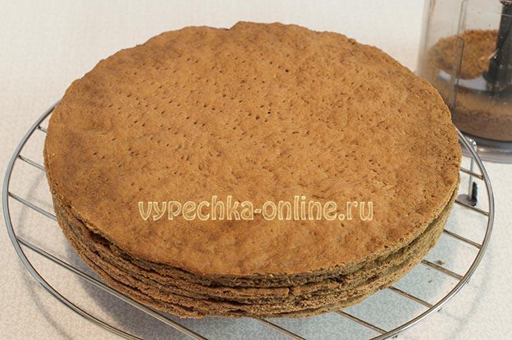 Коржи для торта с какао