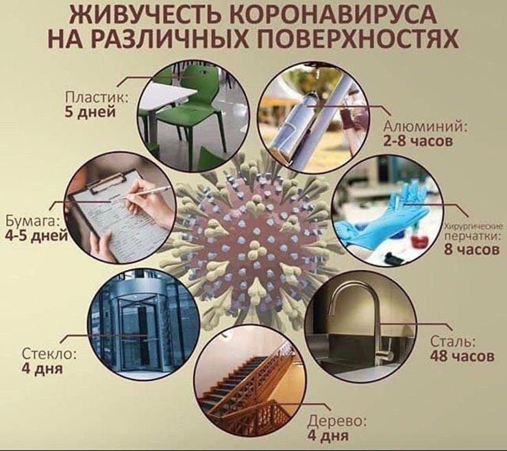Сколько живёт коронавирус на поверхностях