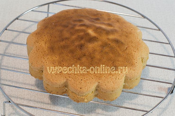 Бисквитный торт в домашних условиях простой рецепт с фото
