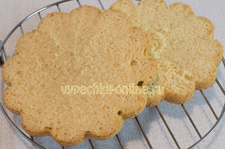 Торт из бисквитных коржей со сметанным кремом