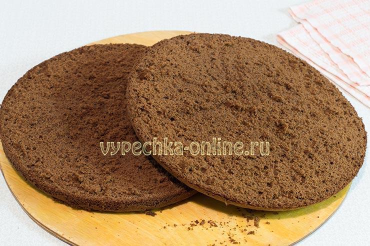 Рецепт шоколадного бисквита самый вкусный