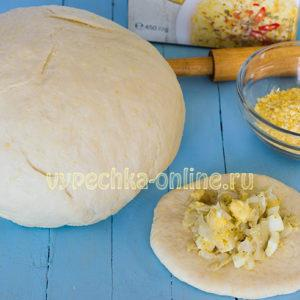 Дрожжевое тесто для пирожков с сухими дрожжами на молоке и воде – как приготовить, рецепт с фото
