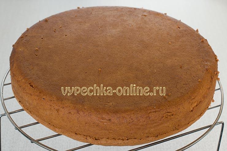 Пышный бисквит в духовке с мёдом рецепт